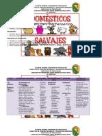 Miniclase Sobre Animales Salvajes y Domesticos