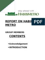 Report on Habib Metro