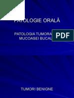 Patoralast 1curs b213