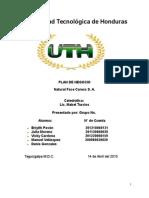 Proyecto Final Gestion Empresarial 2015
