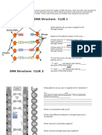 dna structure teacher handout