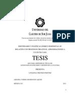Identidades y Políticas Lésbico Feministas (Tesis, 2013)
