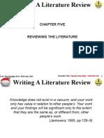 Writing a Litrev