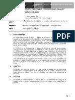 Informe 12 NBH.docx