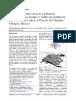 Representaciones Sociales y Prácticas Curativas de Las Madres y Padres de Familia en La Atención a La Salud en Paraíso Del Grijalva, Chiapas, México