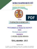 Informe de Elaboracion de Mermelada de Papaya