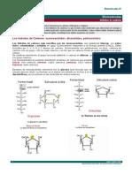 Biomoleculas IV