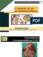 PRESENTACIÓN TEMA 3.3.pdf