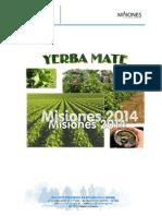 Yerba Mate Análisis Sectorial