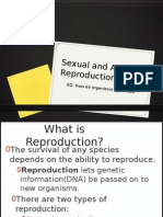 Asexual reproduction meaningful beauty