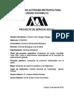 Proyecto VSG