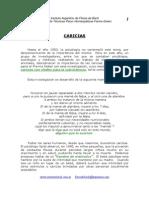 03 Caricias