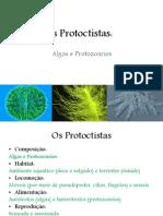 Aula 3 (Protoctistas)