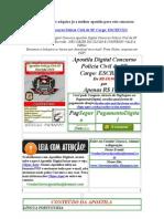 Apostila Digital Concurso Polícia Civil de SP 2010 para o cargo  Escrivão Gratis Baixar download 2009 2010