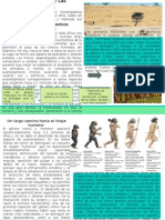 Monografia Parte Paleolitico
