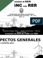 Problemática de La Conexión de Las CGNC Con RER