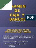 25.- Examen Caja y Bancos