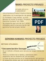 Proyecto Privado Genoma Humano(Elder y Brian)