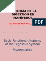 Fisología de La Digestion Cerdos, Aves y Caballo