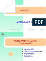 Unidad 4 Membrana Celular