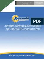 03601SENA-33