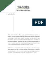 Documento Higuerilla.doc