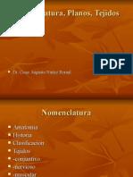 Anatomia General Articulaciones
