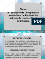 El Aumento de La Capacidad Metabólica de Escherichia Coli