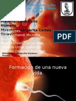 Etapa Prenatal y Perinatal 2