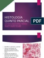 endocrinorepaso-121210201627-phpapp01