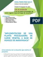 Proyecto de Inversion-Formulacion de Proyectos
