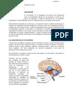 Inteligencia emocional e inteligencia social