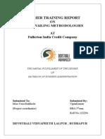 fullertonindiacreditcompanyprojectreport1-140520083750-phpapp02