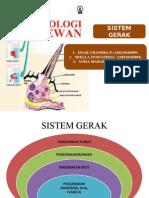 2. Sistem Gerak Ppt.ppt