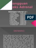PLENO Gangguan Korteks Adrenal.pptx