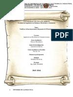 Informe de Medidas Puente Wheatstone
