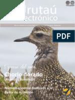 URUTAU ELECTRONICO - No 10 - OCTUBRE 2012 - GUYRA PARAGUAY - PORTALGUARANI