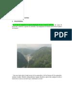 Introducción Aei-21 Agosto 2014