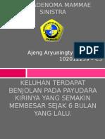 Ppt Blok 24 Fam Ajeng Ad