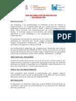Diplomado en Dirección de Proyectos - Estándar Pmi