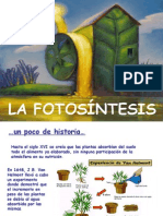 Fotosíntesis 2015