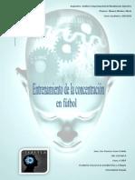 pd atencion.pdf