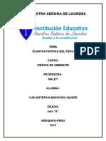 Diccionario de Plantas.2015