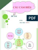 4-Co_cau_cam_bien