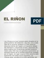 EL RIÑON