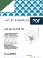 Nucleos Mediales