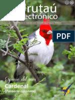 URUTAU ELECTRONICO - No 9 - SETIEMBRE 2013 - GUYRA PARAGUAY - PORTALGUARANI