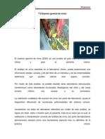 Lectura 4 Examen General de orina.pdf