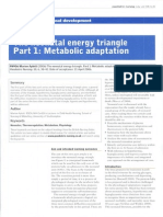 Neonatal Energy Triangle Part 1