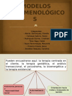 Modelos_Fenomenologicos